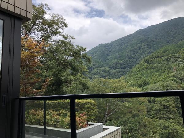 エクシブ箱根からの眺め
