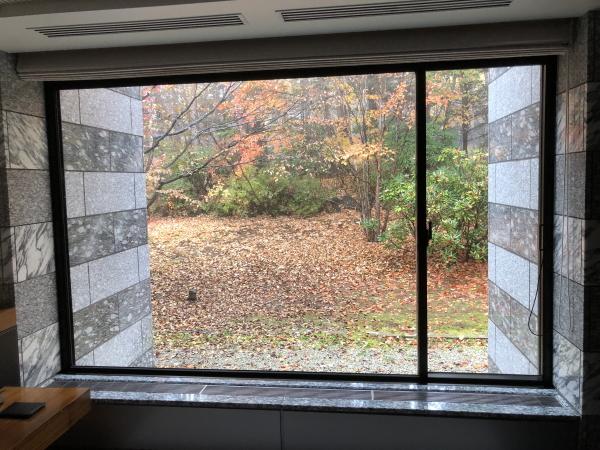 エクシブ軽井沢ムセオの窓から見える木々